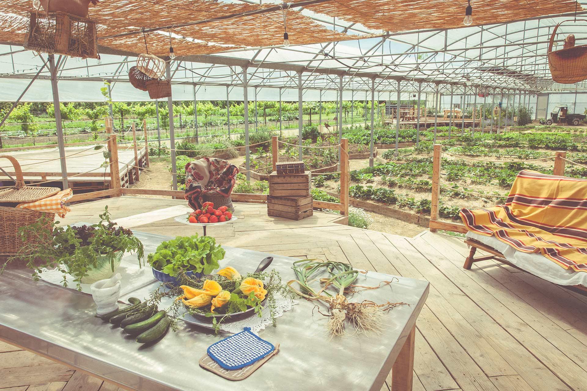 La Fragola de Bosch - Azienda Agricola